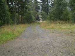 The forest track that doubles back from the path leads to a second car park.