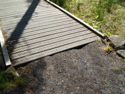 There is a 30mm step coming off the end of the boardwalk.