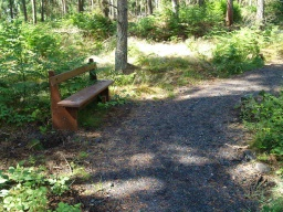This seat provides another rest point along the slopes on this section of the trail.