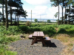 This picnic table provides fine views over the forth Valley. It is close to some features of interest associated with the Battle of Bordie