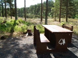 This is the first of four picnic tables with good views of this side of the pond.