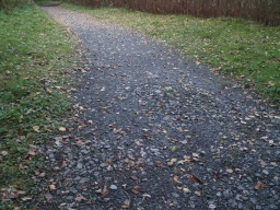 There are patches of the path where the surface is a little uneven.
