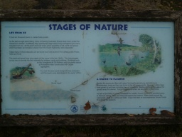 An information board provides background on the ponds and their wildlife.