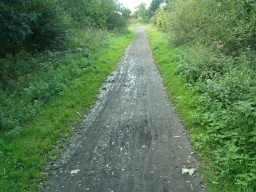 There are some puddles and muddy patches especially after wet weather.