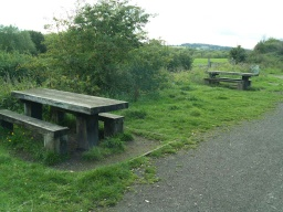 There are two picnic tables just off the trail near Wigfield Farm.