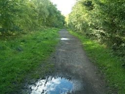 Puddles can occur after wet weather.