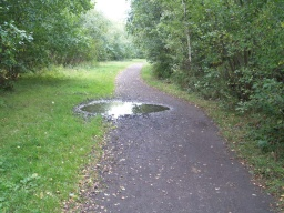 Puddles on the path are common after wet weather.