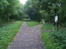 Take the path to the right down to House Carr Lane and Moor End Lane leading to Silkstone Common.