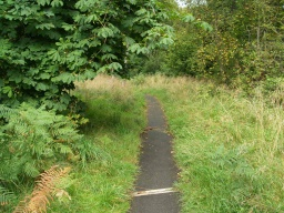 Be aware of small drains across the path which may be a tread obstacle.