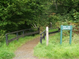 The spur to the arboretum is clearly signed.Its path is of crushed stone, and of the same width as the tarmacked path.