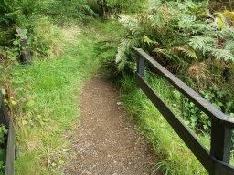 The path rises at an average gradient of about 8% (1:12) but has short sections as steep as 12% (1:8).A handrail is available on one side of the path for most of the way.Vegetation may encroach into the path in some places.