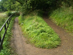 Some sections of the path may be muddy and slippery when wet.