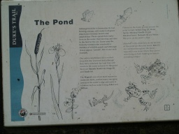 The Pond sign