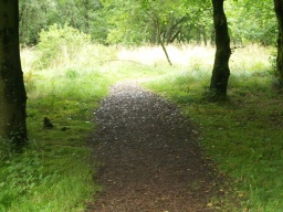 A rough path leads back to the visitor centre along a route that is about 1.5 miles long.The easier alternative is to return down the spur and at the bottom turn right along the tarmac path.