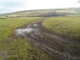For the first 350m of the route it follows a working farm track that may be muddy when the weather has been wet.