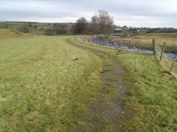 Because of rabbit scrapes and grass encroachment the path may be uneven and a little narrow in places.
