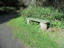 There is some seating available, but this is neither as frequent or as accessible as on the initial part of the trail.