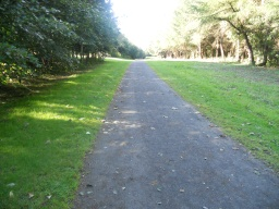 A long straight path leads visitors towards a view of the Belvedere.