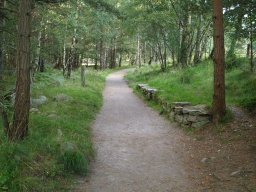 The path to the visitor centre is wide enough for two people to walk side by side for most but not all of its length.