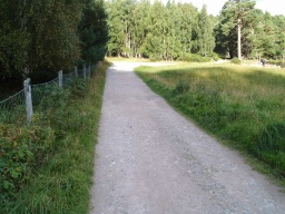 The path from the visitor centre to the loch shore is wide with a firm stable surface.