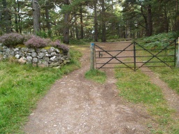 The gate through the dyke has a gap of about 700mm next to it.