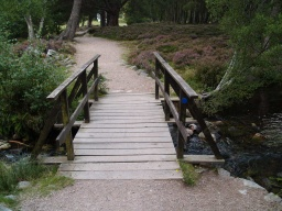 The bridge has a wooden surface that may be slippery when wet.