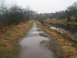 After wet weather there are numerous puddles along this section  of the tow path.