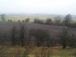 There are views over open countryside from the canal  tow path.