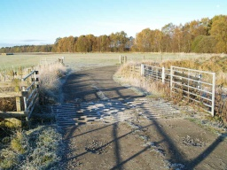 There is another cattle grid on the track to the car park.