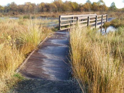 This is the start of the boardwalk which runs for over 300m. At 1.2m it is wide enough for two people to walk side by side. The boardwalk has with edge boards.