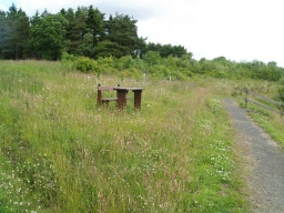 A picnic table is available in the grass near the furthest point on the trail from the start.