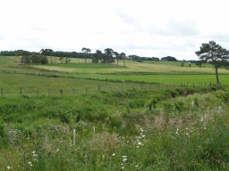 There are good views of the attractive surrounding countryside.