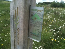 There is an information sign giving details of the reed beds and how they help clean water from old mine workings.