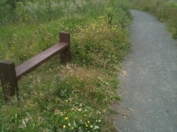 There is a seat above the steepest part of this link path.
