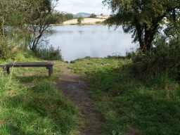 There is a bench overlooking the reservoir with an informal track from the main path.
