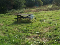 Picnic table in middle of grassy area