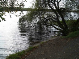 Fishing platforms are available at numerous places around the reservoir.