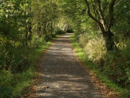 A clear view of the path ahead