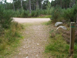 The path leads directly back to the car park.