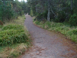 The first half of the trail is wide enough for two people to walk side by side but after the path rejoins the Alt Mhor trail near the main road it becomes narrower in several places over the return to the start.