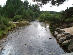 The bridge crosses a typical Cairngorm burn.