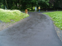 The trail has a tarmac surface throughout. It is wide enough for two people to walk side by side except in a few places where vegetation or broken edges narrow the path for short stretches. The path runs along the side of a hill for most of its length and has cross gradients in excess of 4% (1:25) in a few places