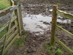The surface in the area of the gate is very muddy in wet conditions but may improve in drier months.