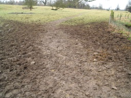 As the path begins it is very muddy and uneven but it improves a short distance from the gate.