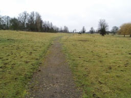 The path across this grass parkland is of crushed stone but may be a little uneven because of loose stones and grass growing into it.