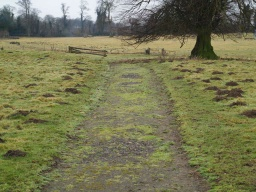 The path surface is a little uneven where grass has grown into it.