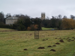 Hackthorn Hall and the church are visible from the walk.