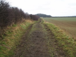 The trail follows this and similar farm tracks for more than 1Km.