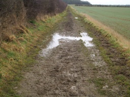 There may be occasional patches where it is very muddy, especially after wet weather.