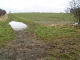 Wet areas may be present after it has rained.